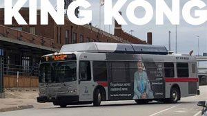 Trinity Metro Bus Advertising King Kong
